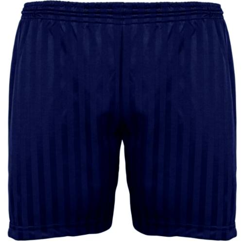 banner navy shorts aaaa112123